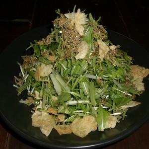 水菜のハリハリサラダ525円